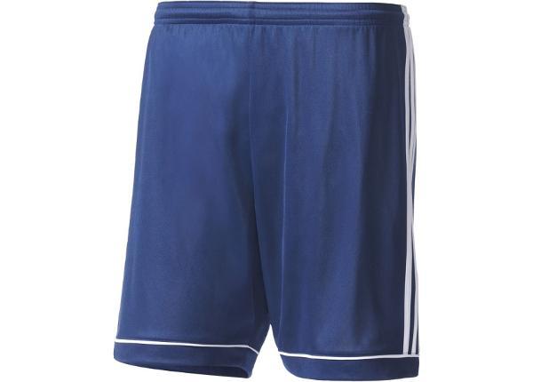 Miesten jalkapallohousut Adidas Squadra 17 M BK4767