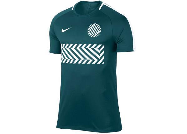 Jalgpallisärk lastele Nike Dry Academy Junior 859936-425