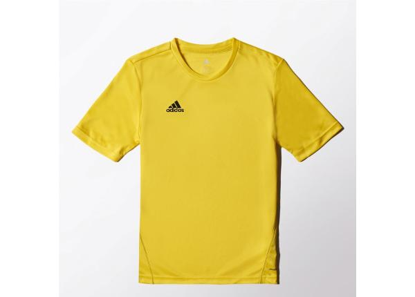 Laste jalgpallisärk adidas Core Training Tee Junior S22403