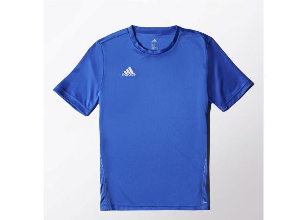 Laste jalgpallisärk adidas Core Training Tee Jr S22400