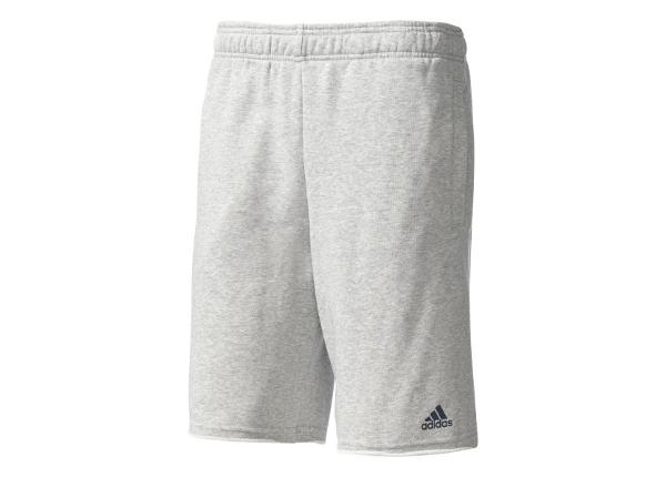 Miesten shortsit adidas Essentials Raw Hem French Terry Short M BK7459