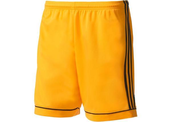 Miesten jalkapalloshortsit Adidas Squadra 17 M BK4761