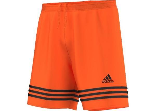 Miesten jalkapalloshortsit Adidas Entrada 14 F50634