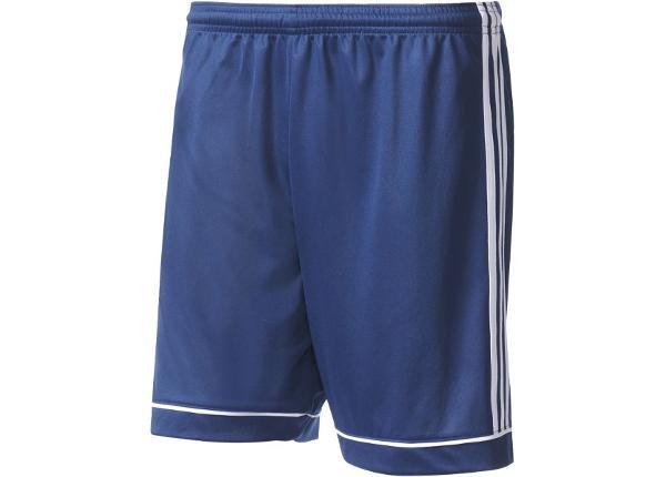 Miesten jalkapalloshortsit Adidas Squadra 17 M BK4765