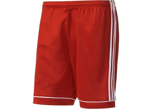 Miesten jalkapalloshortsit Adidas Squadra 17 M BJ9226