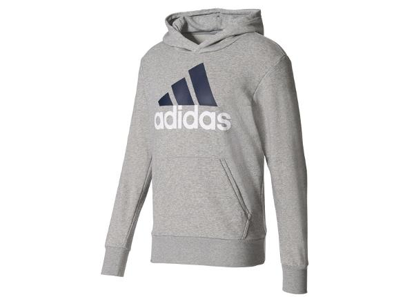 Miesten huppari Adidas Essentials Linear Pullover Hood French Terry M S98775