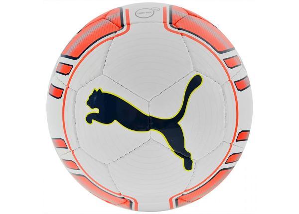 Jalgpall Puma Evo Power Lite 82226-01
