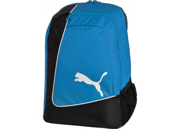 Selkäreppu Puma EvoPower Football Backpack 07388302
