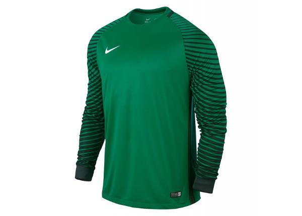 Laste väravavahisärk Nike Gardien LS Junior 725969-319