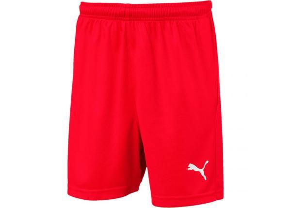 Lasten jalkapalloshortsit Puma Liga Shorts Core JR 703437 01