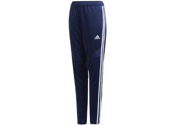 Laste dressipüksid adidas Tiro 19 Training Junior DT5177