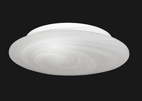 Kattovalaisin Alba AA-187065