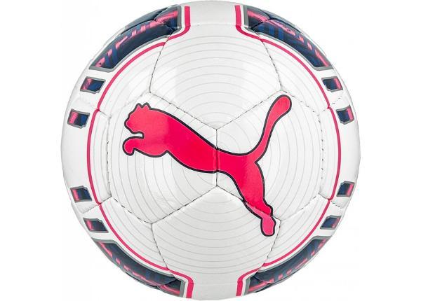 Jalgpall saali Puma evoPOWER 4