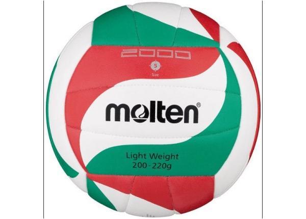 Võrkpall Molten V5M2000-L