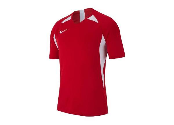 Lasten jalkapallopaita Nike Legend SS Jersey T-shirt JR AJ1010-657
