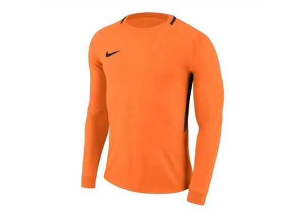 Детская вратарская рубашка Nike Dry Park III LS Junior 894516-803