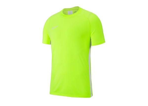 6bf076f4596 Laste T-särk treeninguks Nike Academy 19 Jr AJ9261-702 ...