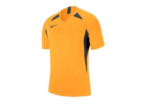 Jalgpallisärk meestele Nike Legend SS Jersey M AJ0998-739