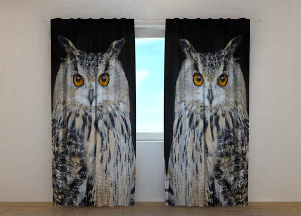 Poolpimendav kardin Attentive Owl ED-189474