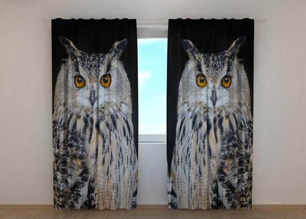 Pimendav kardin Attentive Owl ED-189475