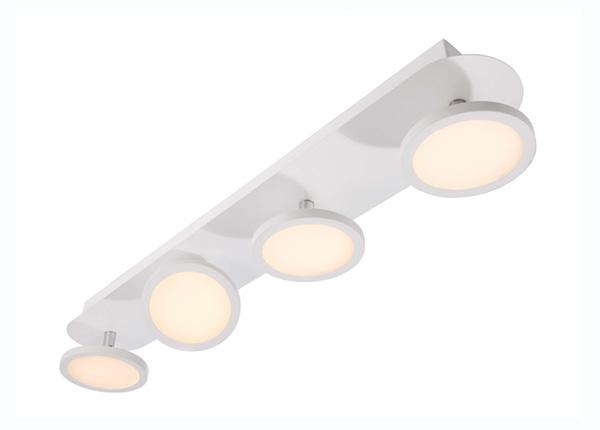 Kohdistava kattovalaisin Dubhe IV LED LY-190899