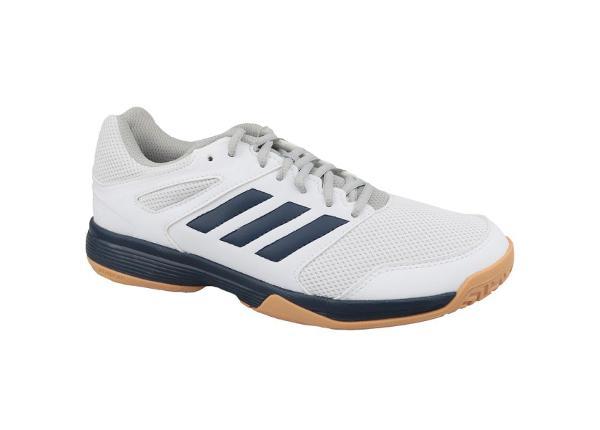 Vabaajajalatsid meestele adidas Performance Speedcourt M EF2623