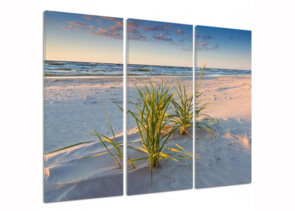 Kolmeosaline seinapilt Green grass on the beach 3D