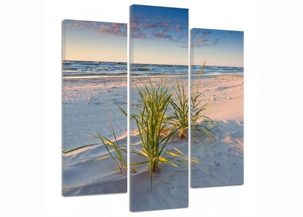 Kolmeosainen seinätaulu Green grass on the beach 3D