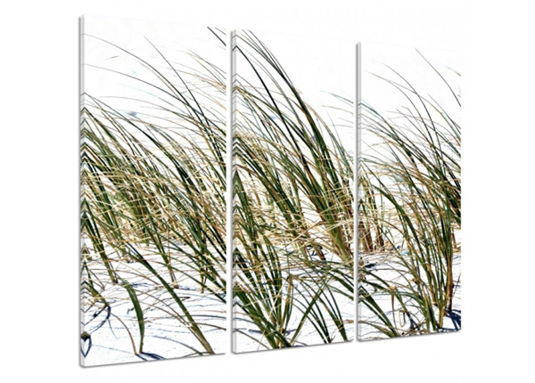 Kolmeosainen seinätaulu Grass on the beach 3D