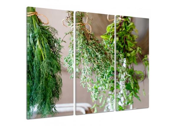 Картина из 3-частей Fresh herbs 2 3D 90x80 см