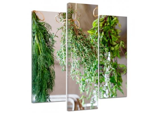 Kolmeosaline seinapilt Fresh herbs 2 3D
