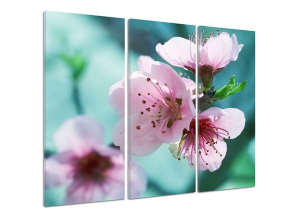 Картина из 3-частей Cherry blossoms 3D 90x80 см