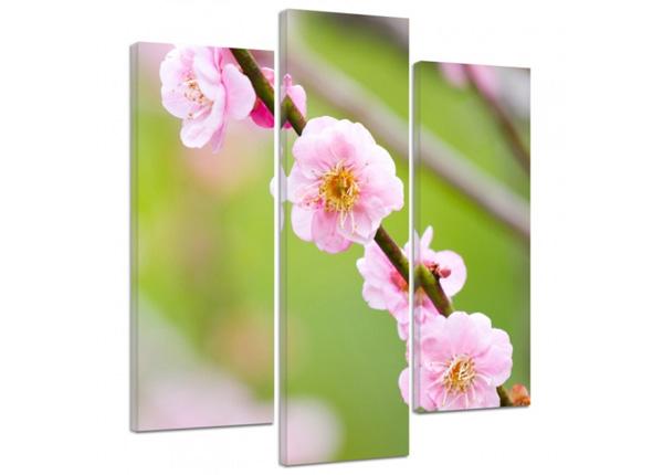 Картина из 3-частей Fruit tree blossom 3D 90x80 см