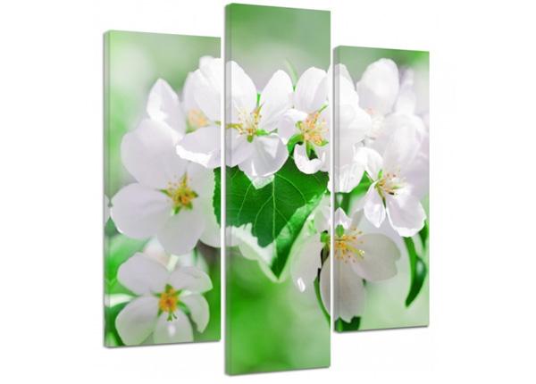 Картина из 3-частей Cherry blossoms 2 3D 90x80 см