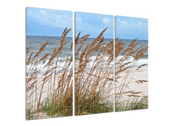Картина из 3-частей Grass by the sea 3D 90x80 см