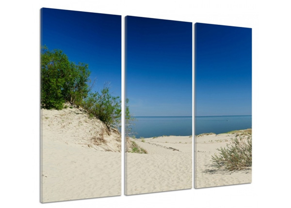 Картина из 3-частей Sandy road 3D 90x80 см