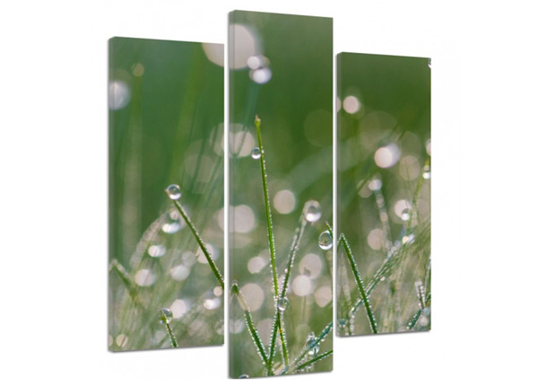 Картина из 3-частей Dew drops on the grass 3D 90x80 см