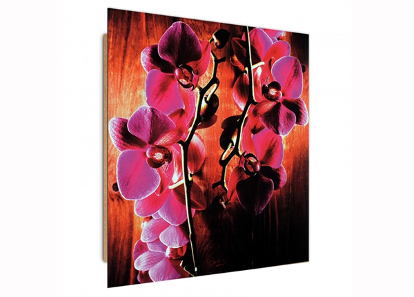 Настенная картина Pink Orchids 3D 30x30 см