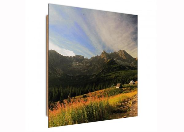 Настенная картина Mountain landscape 3D 30x30 см
