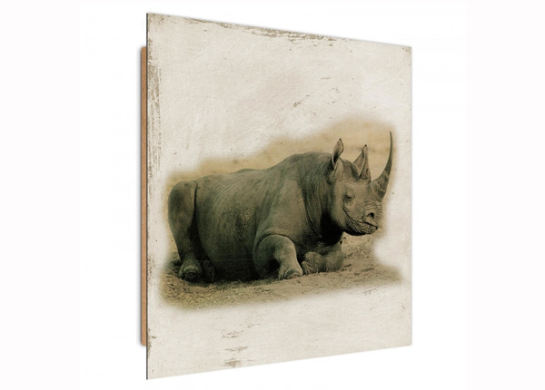 Seinapilt Rhinoceros 3D 30x30 cm ED-194728