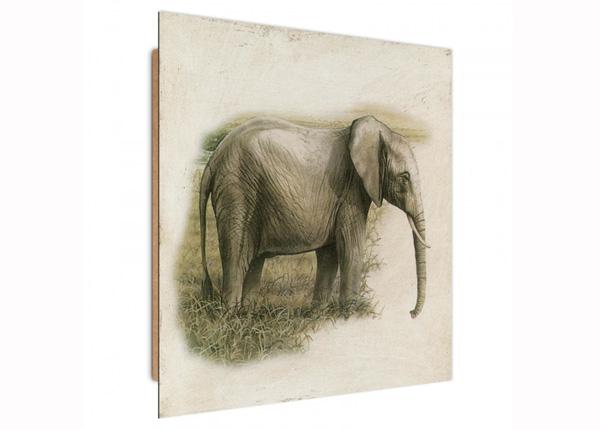 Seinapilt Painted Elephant 3D 30x30 cm ED-194729