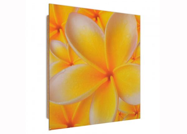 Seinapilt Frangipani flower 3D 30x30 cm ED-194731