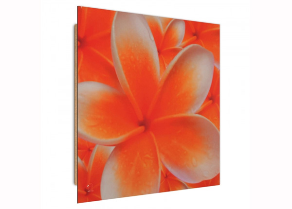 Seinapilt Frangipani flower 1 3D 30x30 cm ED-194732