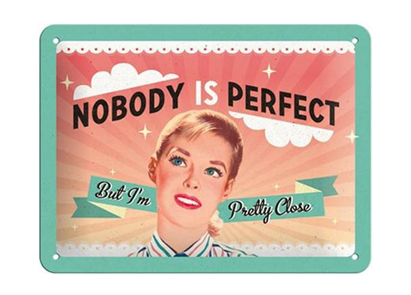 Металлический постер в ретро-стиле Nobody is perfect... 15x20 см SG-195057