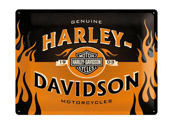 Металлический постер в ретро-стиле Harley-Davidson 1903 logo 30x40 см SG-195266