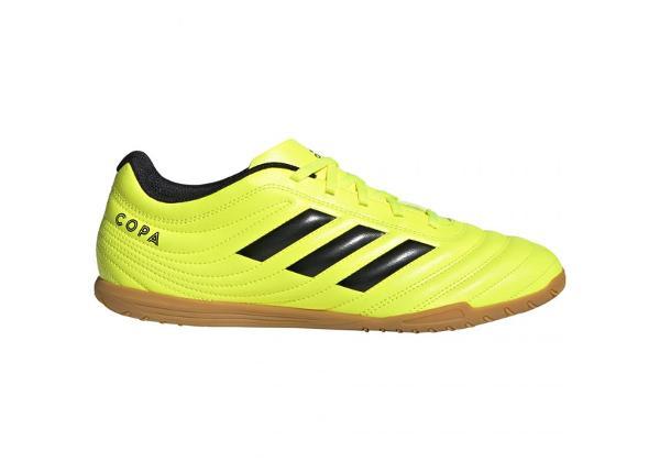 Мужские футбольные бутсы adidas Copa 19.4 IN M F35487