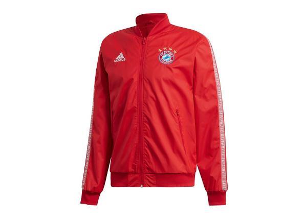 Miesten verryttelytakki Adidas Bayern Monachium Anthem Jacket M DX9218