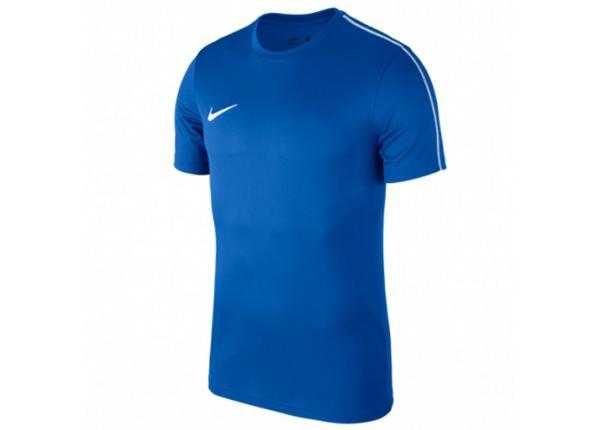Jalgpallisärk lastele Nike Y Dry Park 18 SS Top Jr AA2057-463
