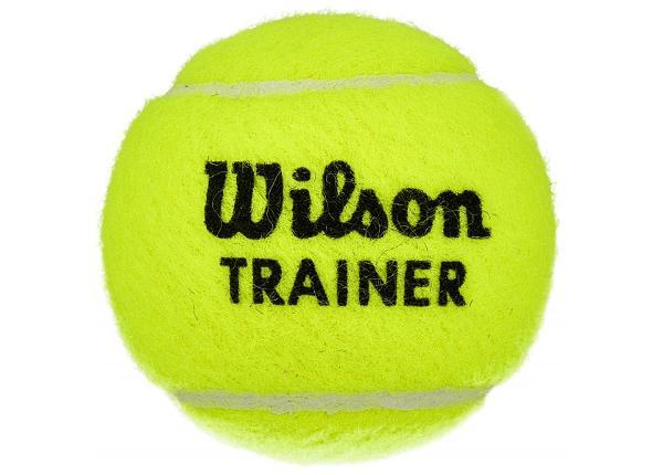 Tennispallo Wilson Trainer TBall WRT131100