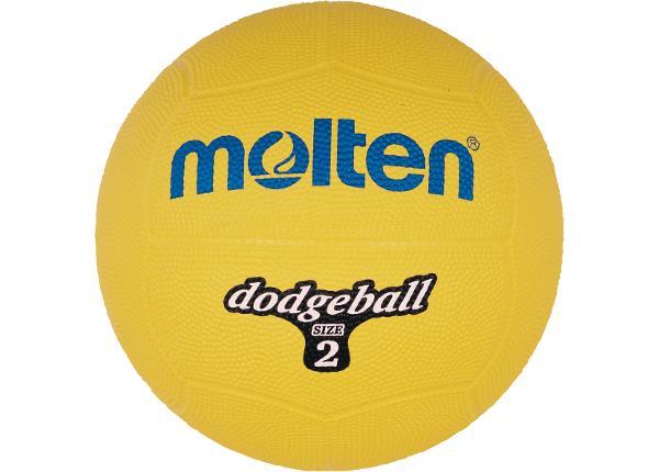 Dodge pallo Db2-Y Molten